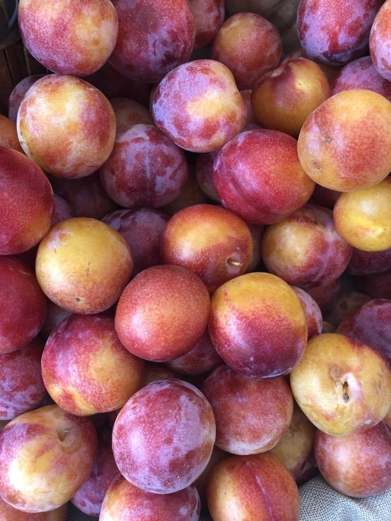 fresh, in-season plums